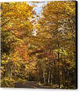 Autumn Drive Canvas Print by Andrew Soundarajan