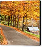 Autumn Road Canvas Print by Brian Jannsen
