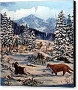 Element Of Suprise Canvas Print by W  Scott Fenton