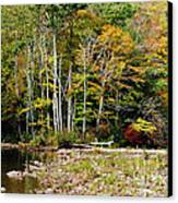 Fall Color River Canvas Print by Thomas R Fletcher