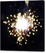 Fireworks Shell Burst Canvas Print by Jay Droggitis