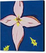 Flower Canvas Print by Melissa Dawn