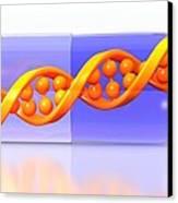 Gene Therapy, Conceptual Image Canvas Print