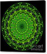 Kaleidoscope Of Glowing Circuit Board Canvas Print by Amy Cicconi