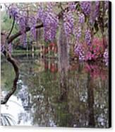 Magnolia Plantation Gardens Series II Canvas Print