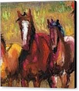 Mares And Foals Canvas Print