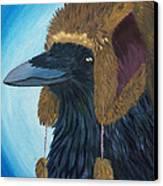 Nice Hat Canvas Print by Amy Reisland-Speer
