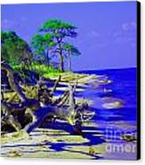 North Florida Beach Canvas Print by Annette Allman