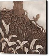 Nut Maze Canvas Print by Suzette Broad