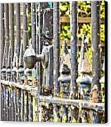 Old Gate Canvas Print