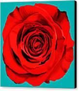 Painting Of Single Rose Canvas Print by Setsiri Silapasuwanchai