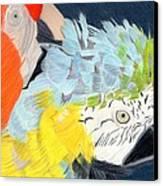 2 Parrots Canvas Print by Bav Patel