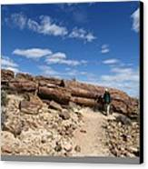 Petrified Forest, Argentina Canvas Print