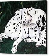 Playful Pups Canvas Print