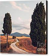 Rural Road With Cypress Tree In Tuscany Italy Canvas Print by Matteo Colombo