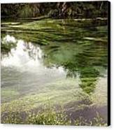 Spring Water Canvas Print