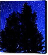 Star Trails In Night Sky Canvas Print