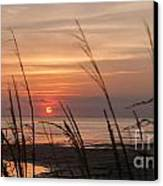Texas Sunset Canvas Print by Tammy Smith