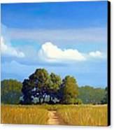 The Path Canvas Print by Kevin Lawrence Leveque