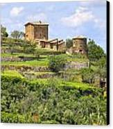 Tuscany - Montalcino Canvas Print