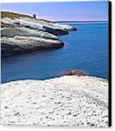 White Chalk Cliffs Eroded Coastline Canvas Print by Dirk Ercken