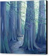 A Morning Stroll Canvas Print by Glenda Barrett