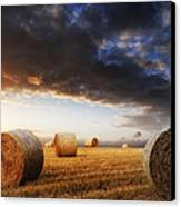 Beautiful Golden Hour Hay Bales Sunset Landscape Canvas Print by Matthew Gibson