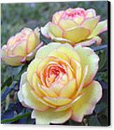 3 Beautiful Yellow Roses Canvas Print by Jo Ann