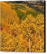 San Juan Mountains In Autumn Canvas Print
