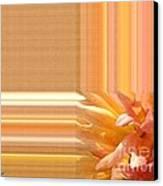 Dahlia Named Intrepid Canvas Print by J McCombie