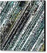 Speak Canvas Print by Coal