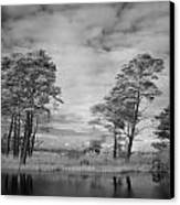 Infrared Picture Of The Nature Area Dwingelderveld In Netherlands Canvas Print