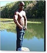 Male Muscle Art Canvas Print