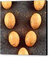 Organic Eggs Canvas Print by George Atsametakis