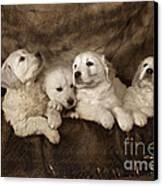 Vintage Festive Puppies Canvas Print by Angel  Tarantella