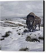 A Bison Latifrons In A Winter Landscape Canvas Print by Roman Garcia Mora