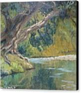 A Coramandel Stream Canvas Print by Terry Perham