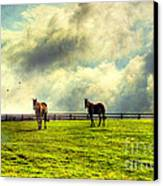 A Day In Kentucky Canvas Print by Darren Fisher