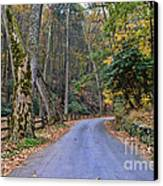 A Drive In The Country Canvas Print by Paul Ward
