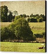 A French Country Scene Canvas Print