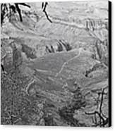 A Grand View Canvas Print by Richie Stewart