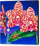 A Little Night Music Canvas Print by Carolyn Steele