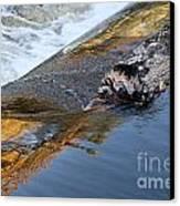 A Log Jams The Dam Canvas Print by Ilene Hoffman