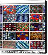 A Menagerie Of Colorful Quilts  Canvas Print by Barbara Griffin