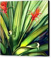 A Peek Through The Leaves Canvas Print by Lyse Anthony