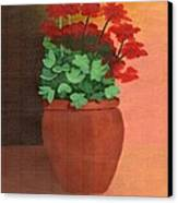 A Pot Of Geraniums Canvas Print by Bav Patel