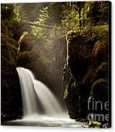 A Ray Of Light Canvas Print by Chris Heitstuman