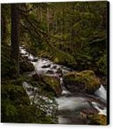 A River Passes Through Canvas Print by Mike Reid