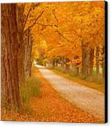 A Romantic Country Walk In The Fall Canvas Print