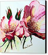 A Rose Is A Rose Canvas Print by Karin  Dawn Kelshall- Best